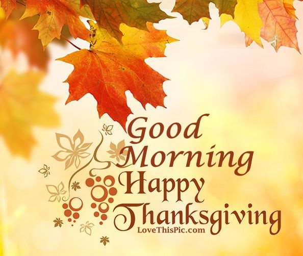 Happy Thanksgiving Pics And Quotes  Good Morning Happy Thanksgiving Image Quote