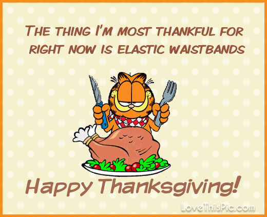 Happy Thanksgiving Pics And Quotes  Garfield Happy Thanksgiving Quote s and