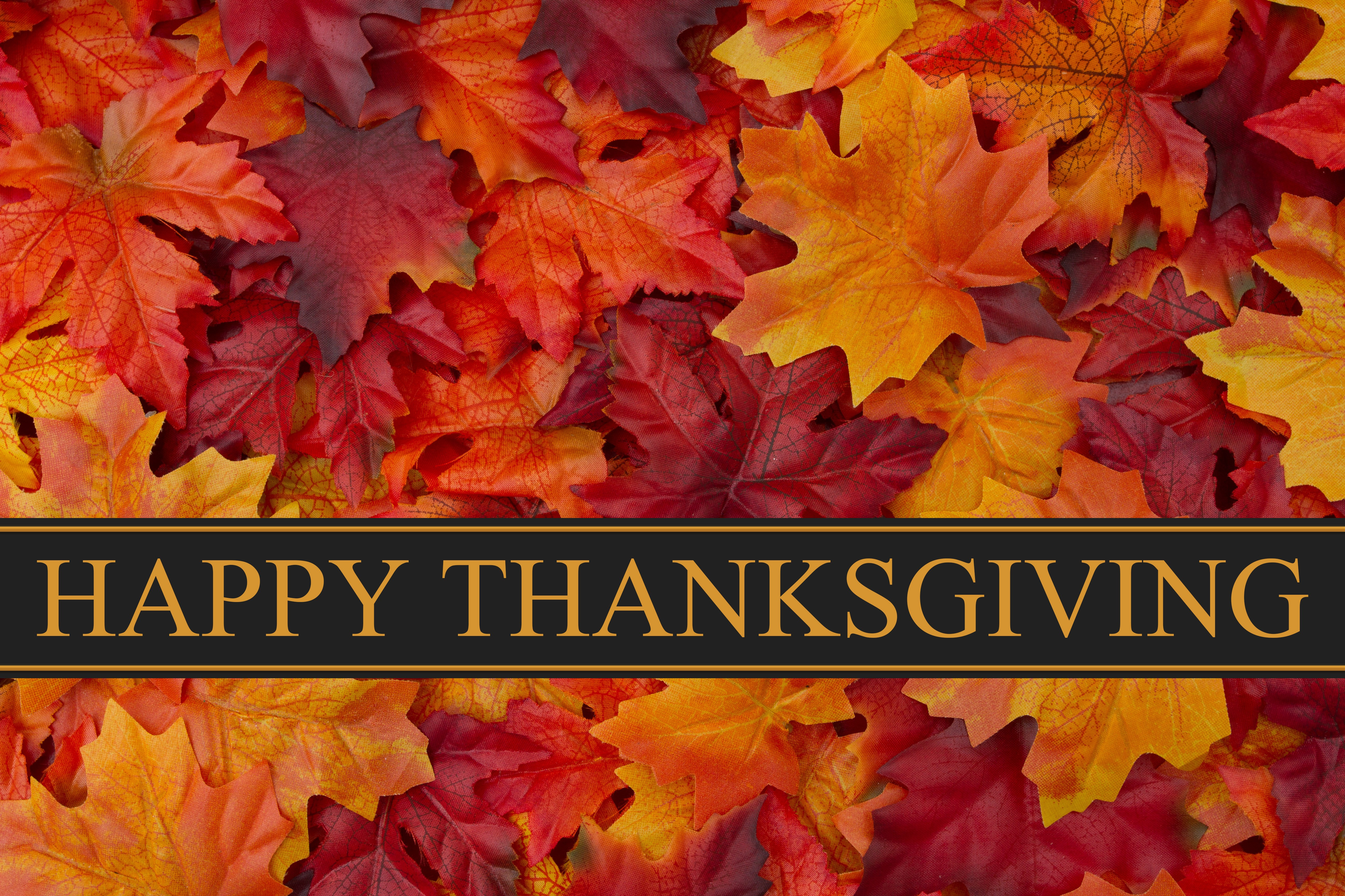 Happy Thanksgiving Pics And Quotes  How to Celebrate American Thanksgiving In Canada Life In