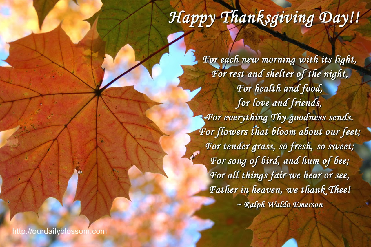 Happy Thanksgiving Quotes For Friends  Lagniappe s Lair Happy Thanksgiving my friends