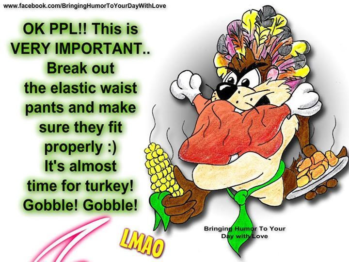 Humorous Thanksgiving Quotes  Best 25 Thanksgiving quotes funny ideas on Pinterest
