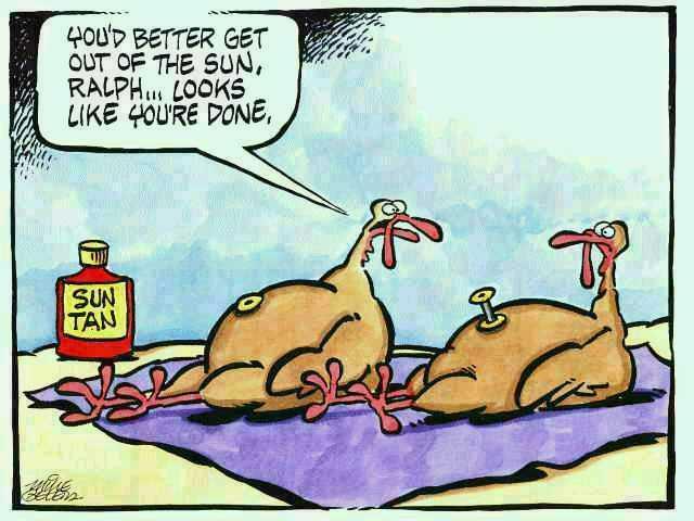 Humorous Thanksgiving Quotes  Waety Muluss thanksgiving funny cartoons