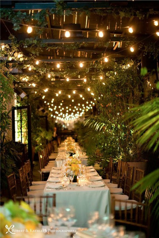 Lighting Ideas For Backyard Party  Party Resources Fall Dinner Party