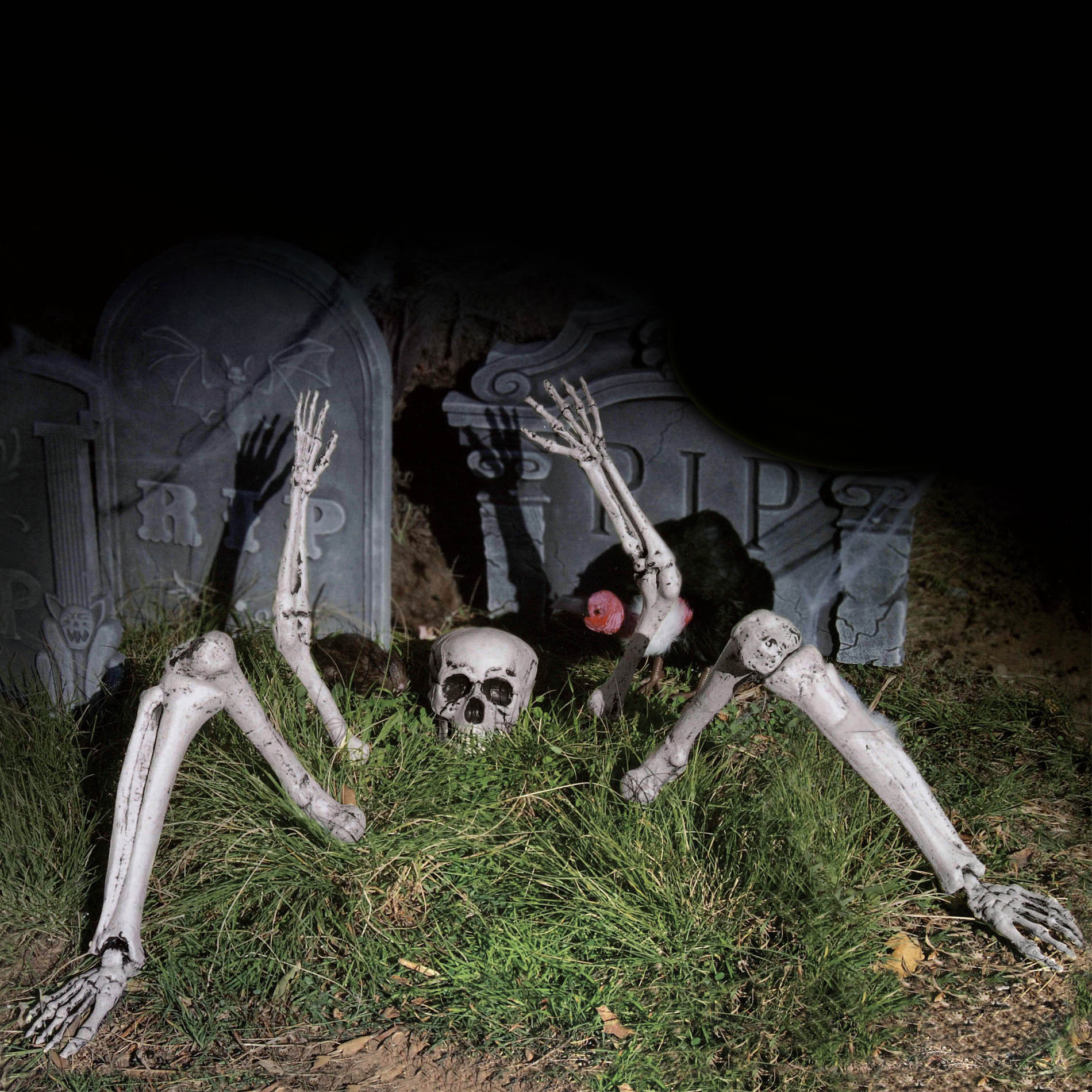Outdoor Halloween Decorations On Sale  Totally Ghoul Skeleton Ground Breaker Halloween Decoration