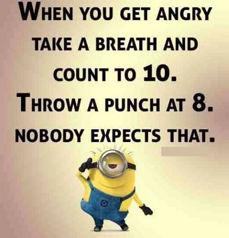 Pictures With Funny Quotes  Funny Minion Quote About Anger s and