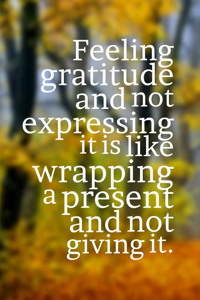 Quote On Thanksgiving  25 best Thanksgiving Quotes on Pinterest