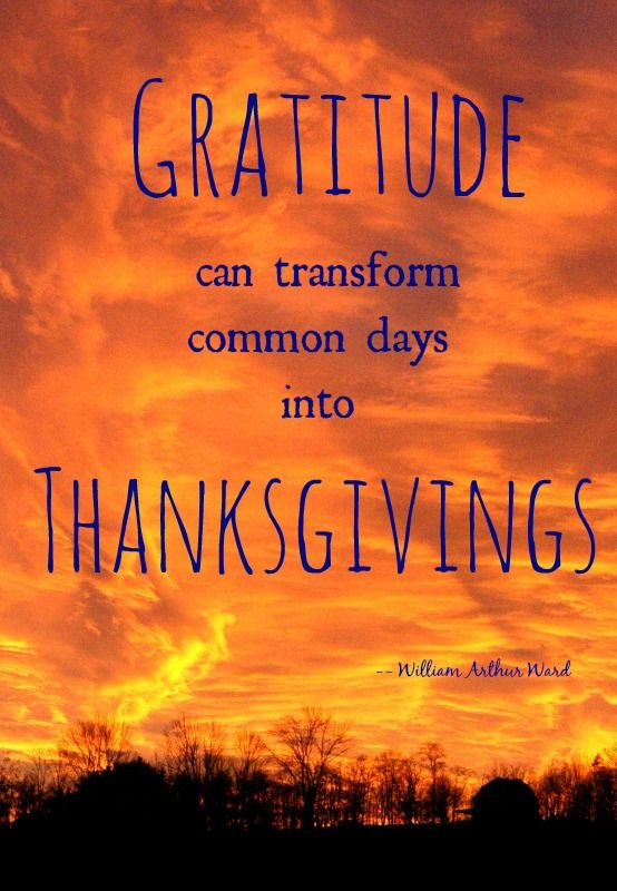 Quote On Thanksgiving  25 best Thanksgiving quotes family on Pinterest