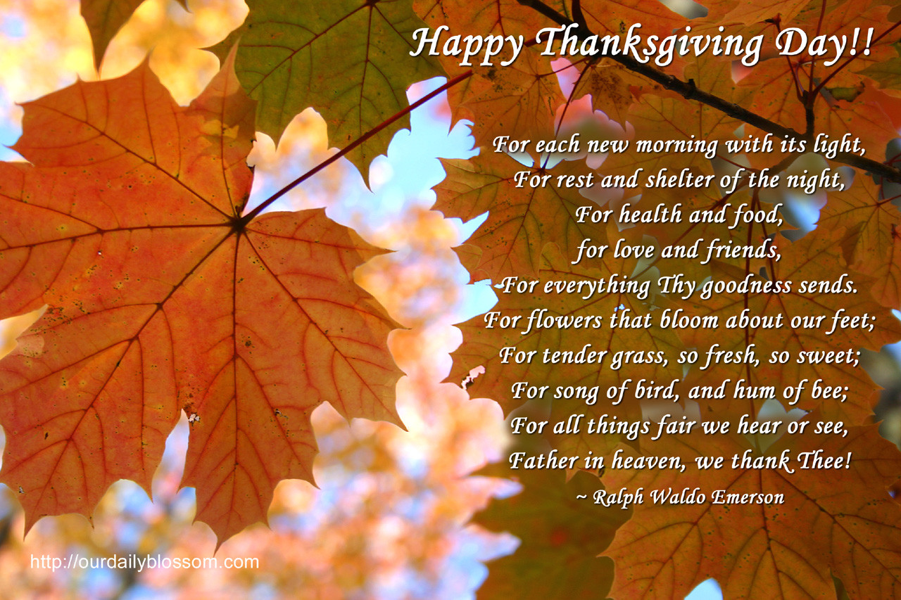 Quote On Thanksgiving  Thanksgiving Quote s and for
