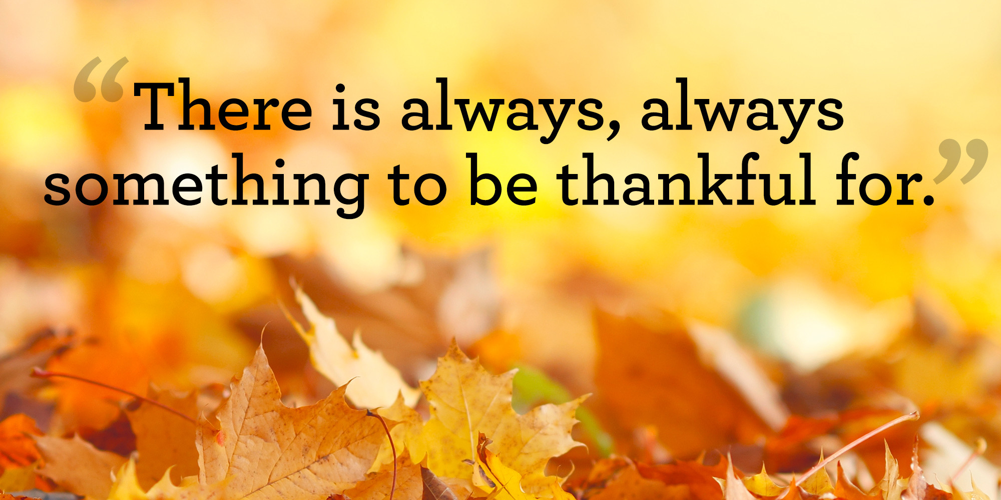 Quote On Thanksgiving  10 Best Thanksgiving Quotes Meaningful Thanksgiving Sayings