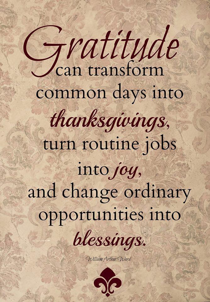 Quote On Thanksgiving  Gratitude transforms
