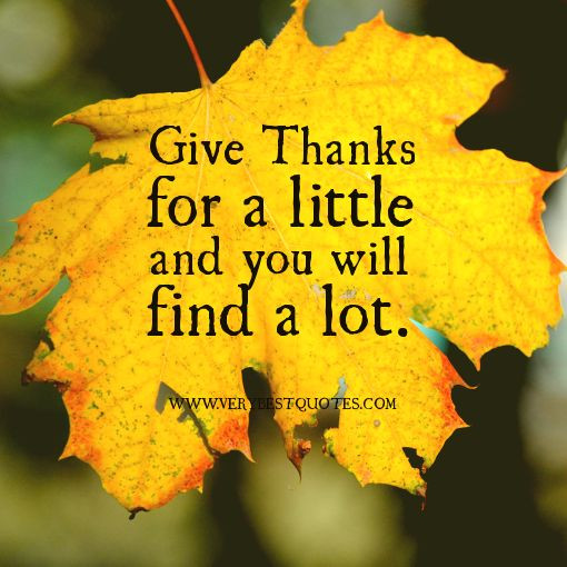 Quote On Thanksgiving  thanksgiving quotes christian