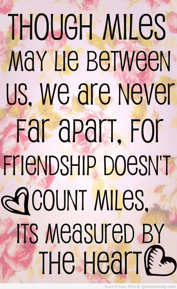 Quotes About Friendship  Top 30 Best Friend Quotes – Quotes and Humor