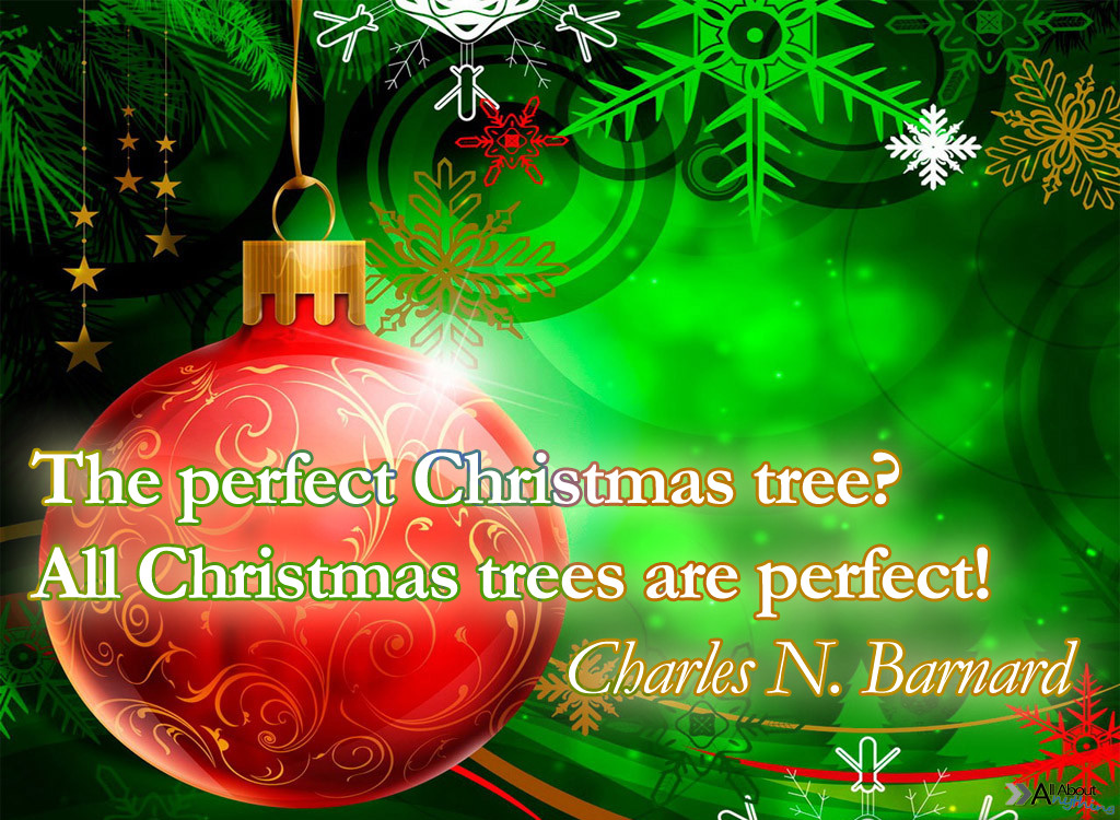 Quotes For Christmas Card  Christmas Text Messages 5 1 12 6 1 12