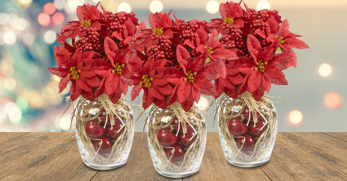Red Christmas Flower Names  Festive Poinsettia and Apple Bouquet