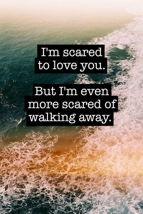 Scared To Love Quotes  I m Scared To Love You But I m Even More Scared Walking