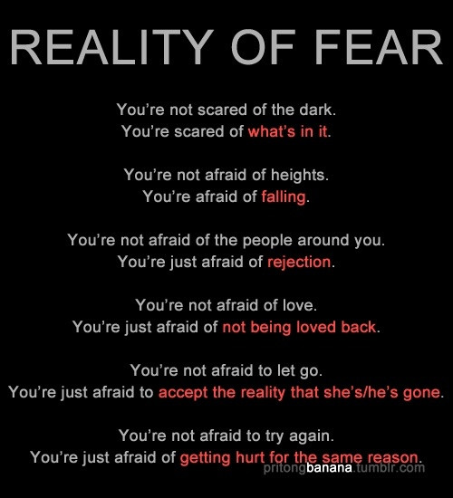 Scared To Love Quotes  Quotes Being Scared To Love QuotesGram