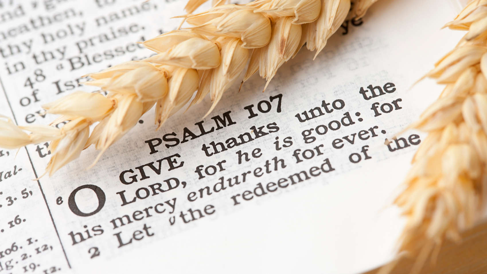 Thanksgiving Quotes To God  Thanksgiving 2015 Bible Verses for Your Cards Ten Best