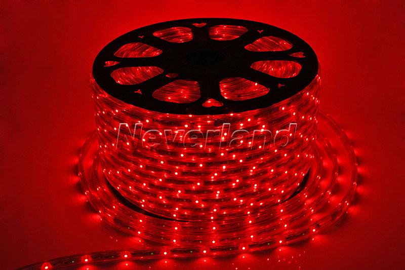 White Indoor Christmas Lights  LED ROPE LIGHTS BLUE GREEN RED WHITE CHRISTMAS LIGHT