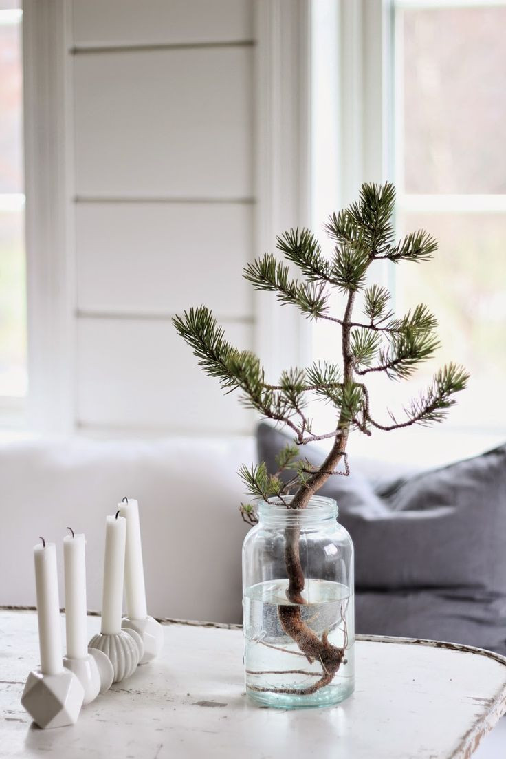 Apartment Sized Christmas Tree  25 unique Advent candles ideas on Pinterest