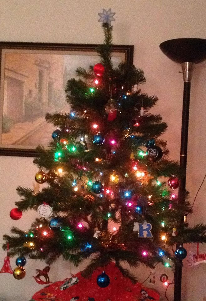 "Apartment Sized Christmas Tree  Writing Tips ""Show Don't Tell"" A K A the Oldest Rule in"
