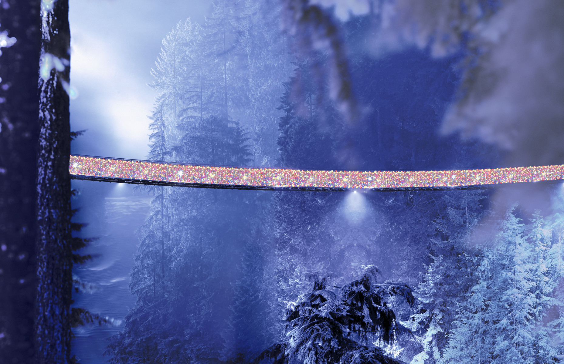 Capilano Suspension Bridge Christmas Fresh Canyon Lights Illuminate the Holidays at Capilano