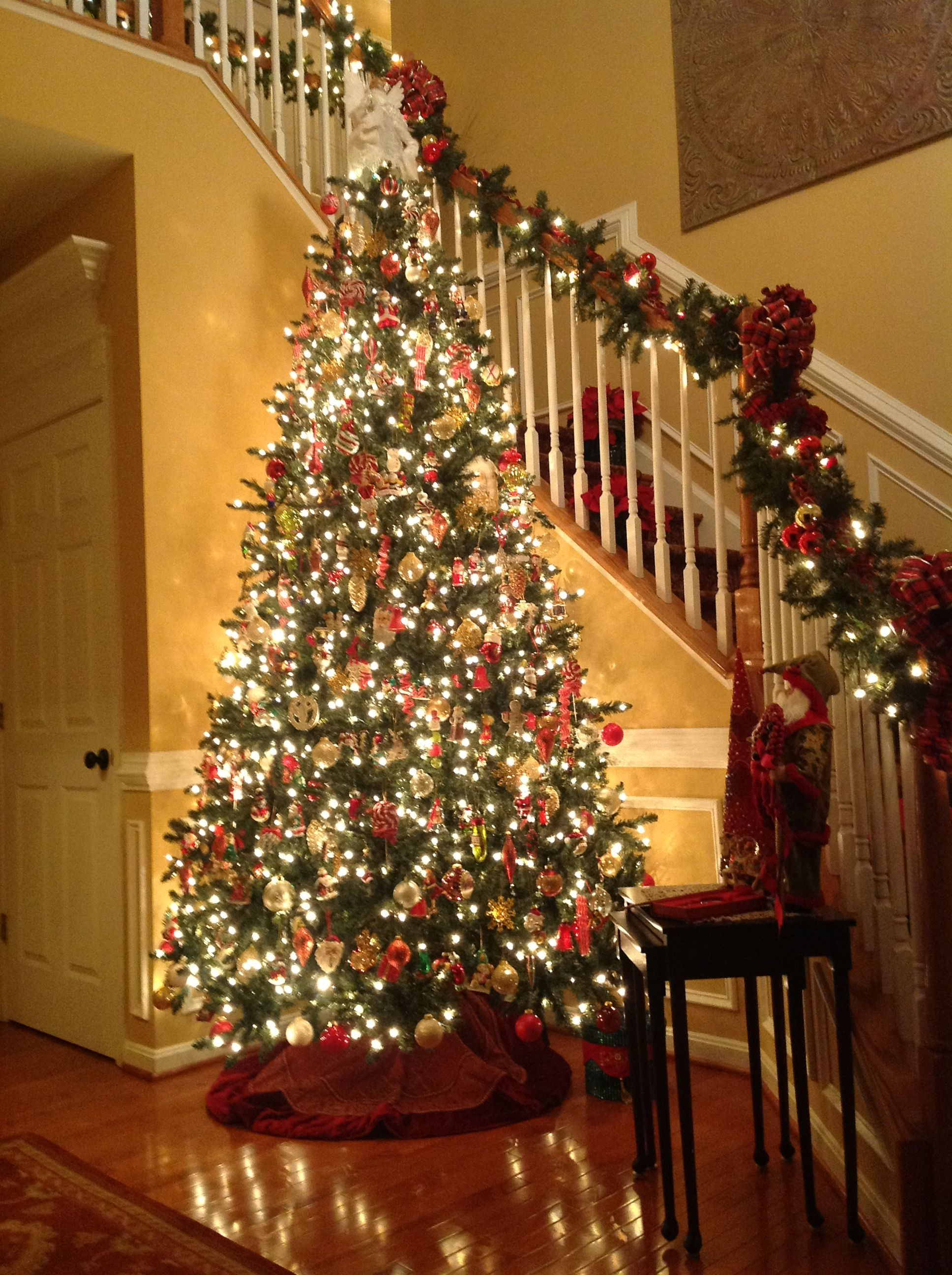 Christmas Entryway Trees  This Christmas tree stands 12 feet tall in our foyer and
