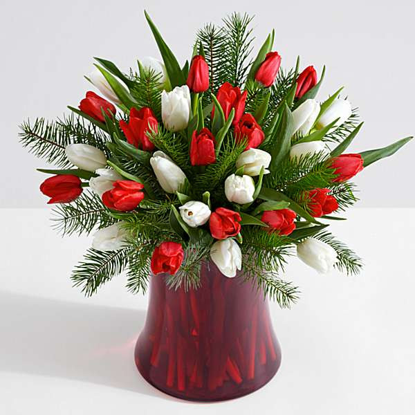 Christmas Flower Delivery Usa  USA Flowers