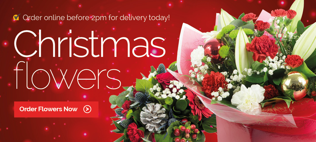 Christmas Flower Delivery Usa  Flower Delivery USA Send flowers same day by florists