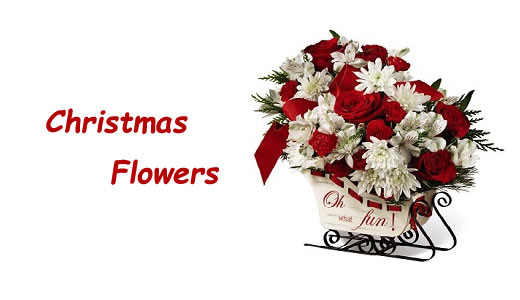 Christmas Flower Delivery Usa  Ital Florist Toronto Top FTD Florist Flower Delivery