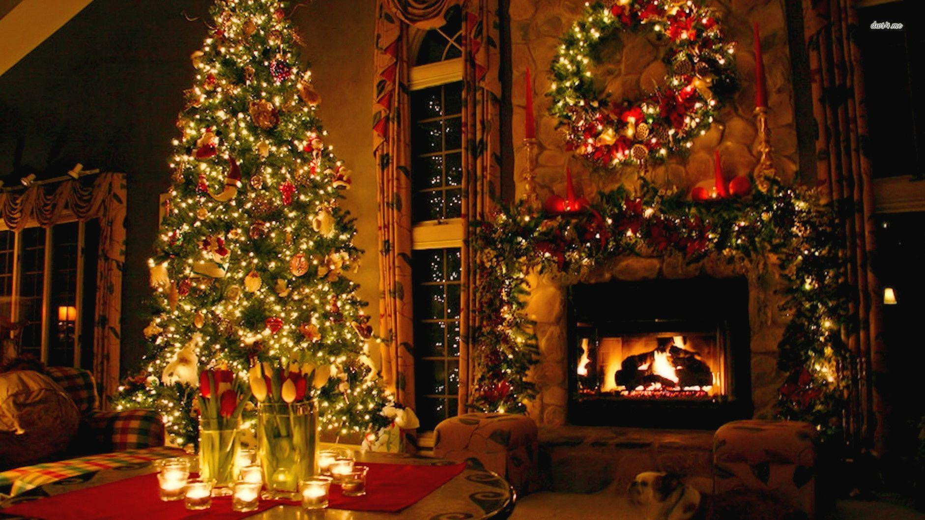 Christmas Tree Fireplace  Christmas Fireplace Backgrounds Wallpaper Cave