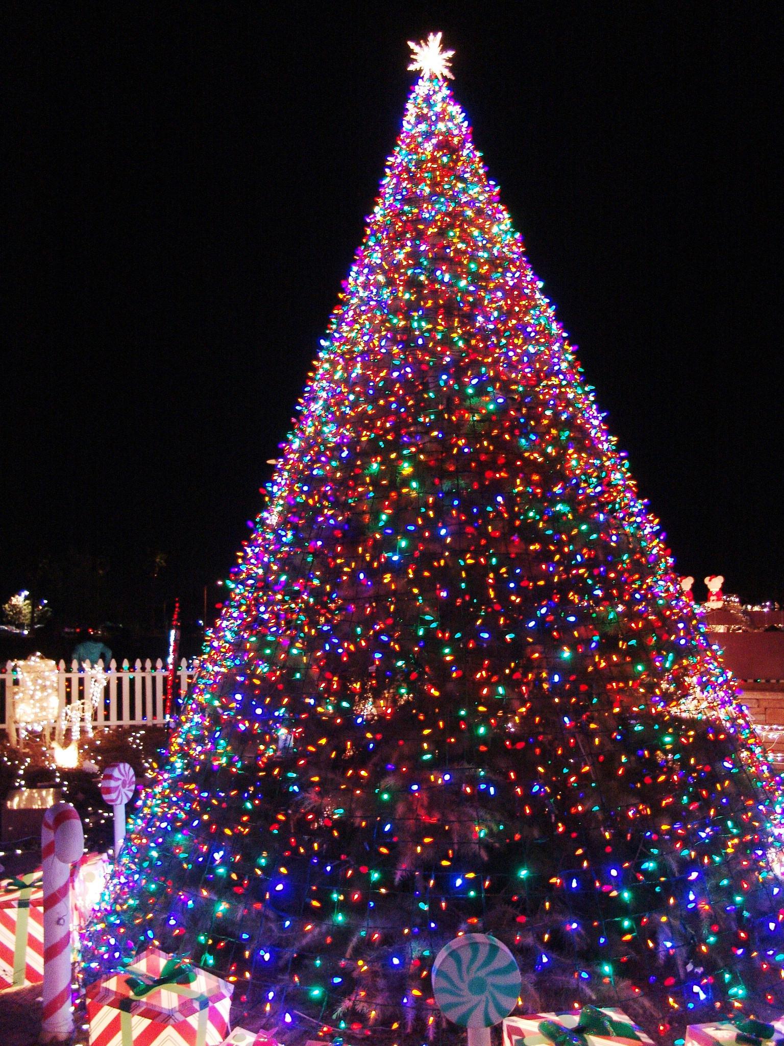 Christmas Tree Lighting Elegant 11 Awesome and Dazzling Christmas Tree Lights Ideas