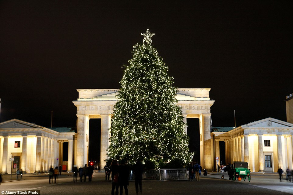 Gate For Christmas Tree  Mail line Travel reveals the best Christmas trees in the