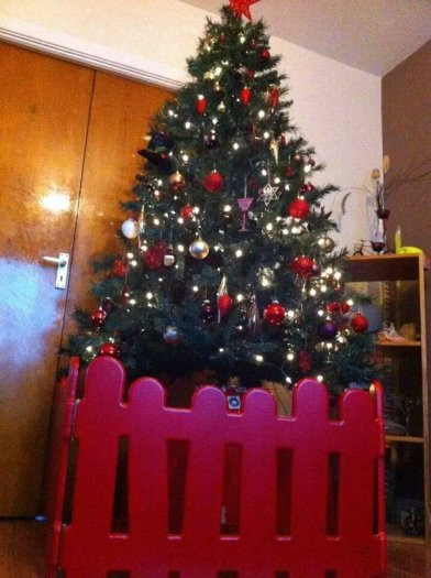 Gate For Christmas Tree  Christmas Tree Gates For Sale in Rathcoole Dublin from