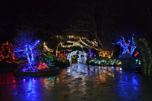 Newport Aquarium Christmas Lights  Central Oregon Coast Holidays Newport s Boat Parade Sea