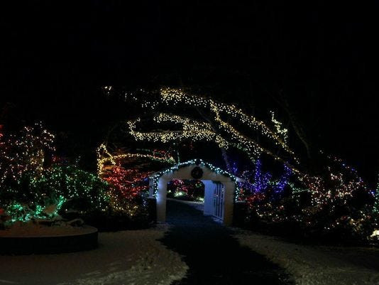 Newport Aquarium Christmas Lights  Sea of Lights returns to Oregon Coast Aquarium