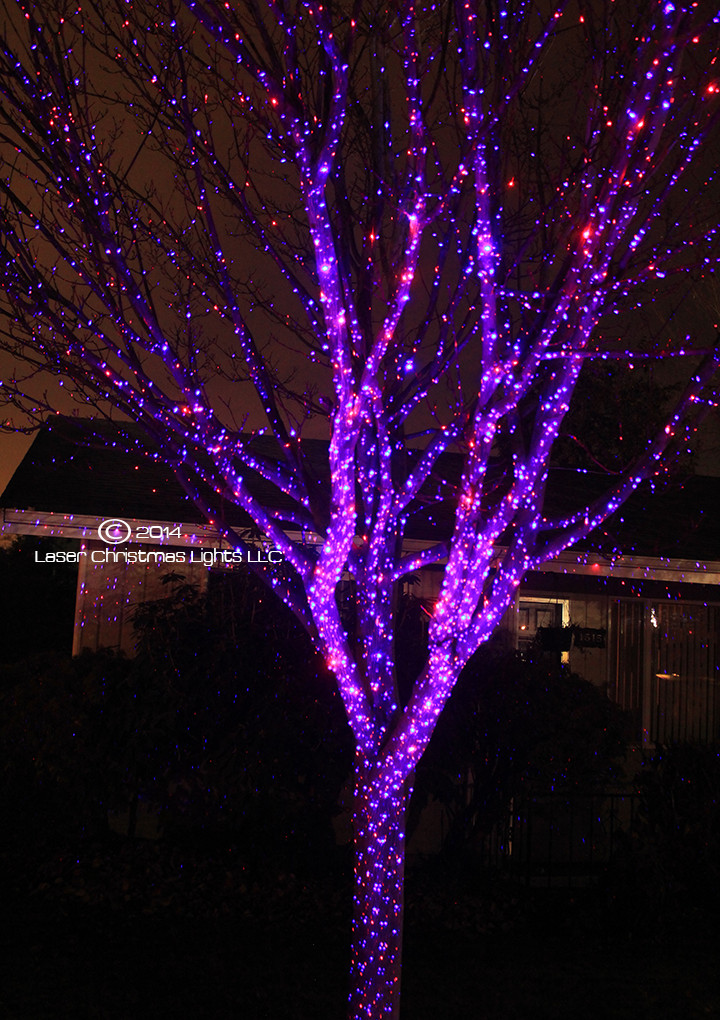 Outdoor Christmas Laser Lights  laser christmas lights outdoor laser lights SO pretty