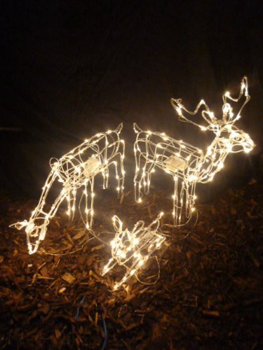 Outdoor Christmas Lights Amazon  Top Christmas Outdoor Animated Decorations Holiday Gifts
