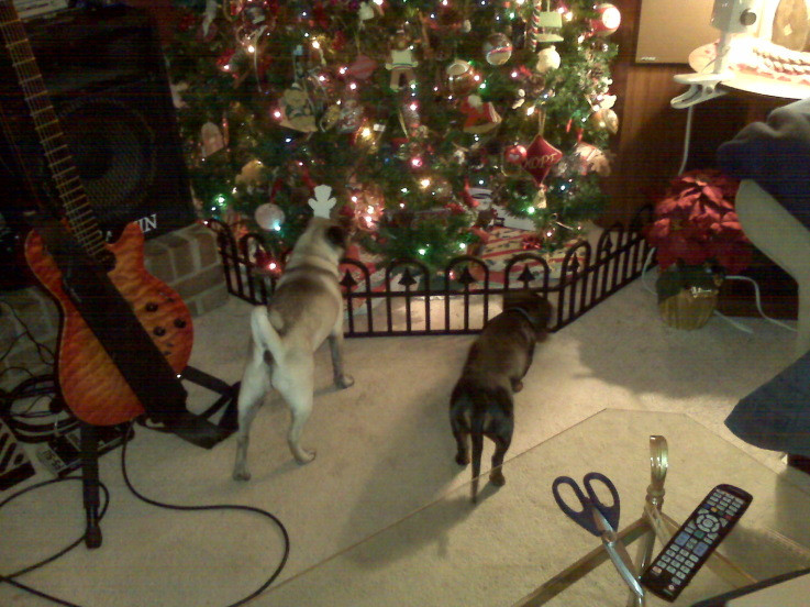 Pet Gate For Christmas Tree  Puppy Fence around Christmas Tree Pugslife