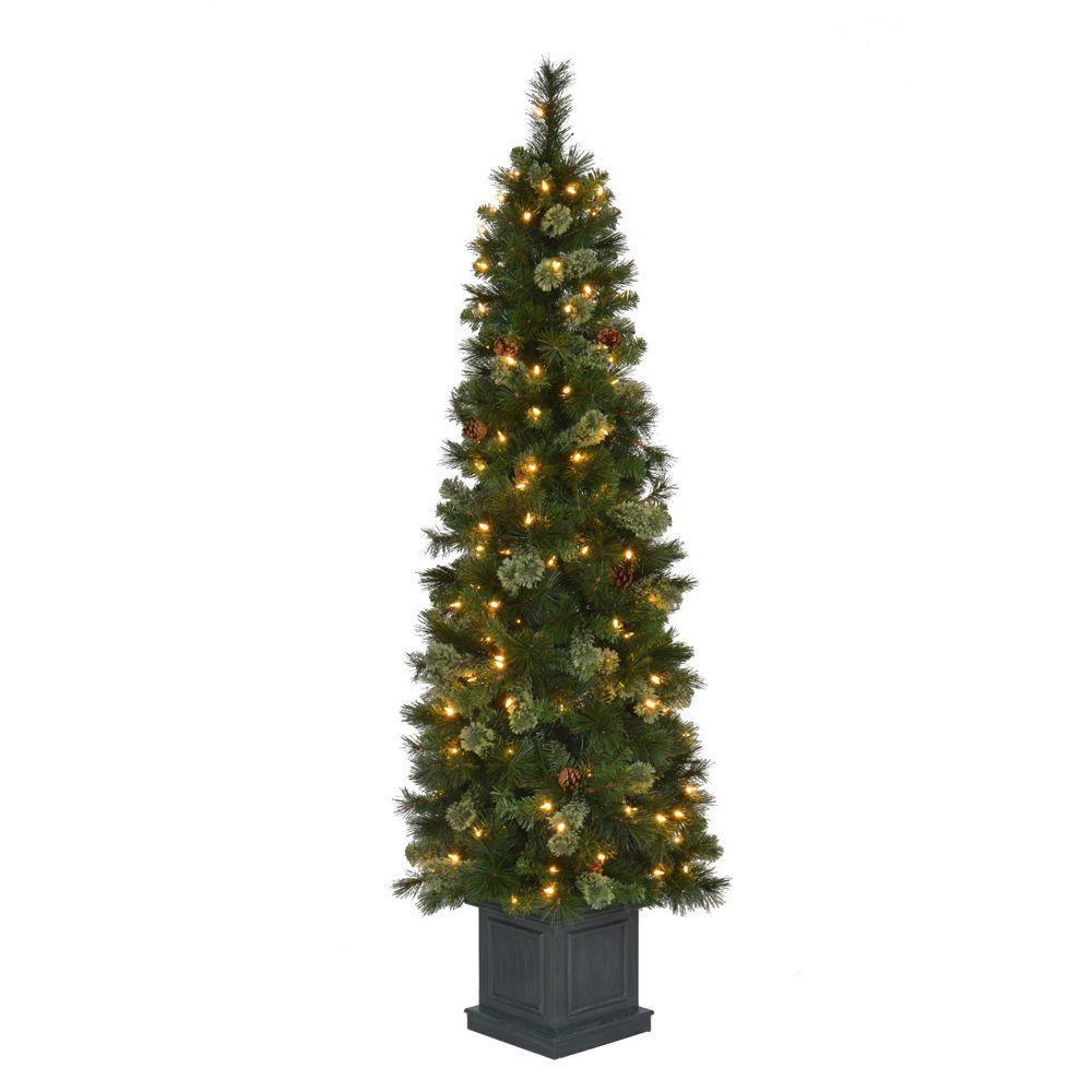 Pre Lit Porch Christmas Trees  Evergreen Nursery Douglasfir Potted Evergreen Tree