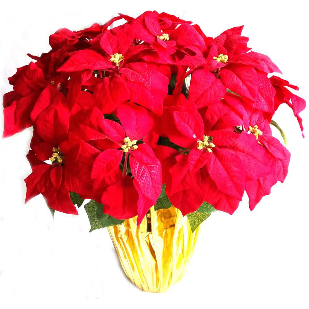 Red Christmas Flower  Home Accents Holiday 14 5 in Dried Floral Wreath Red